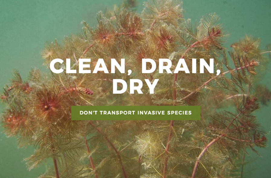 Idaho's Clean, Drain, Dry Campaign for AIS