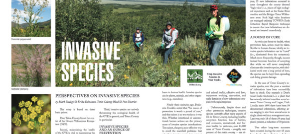 Mosiac - Teton County Weed & Pest Article