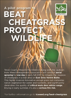 JHWMA Cheatgrass Mitigation Project -Sample advertisement image