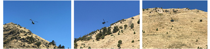 Helicopter over East Gros Ventre Butte - Cheatgrass Mitigation