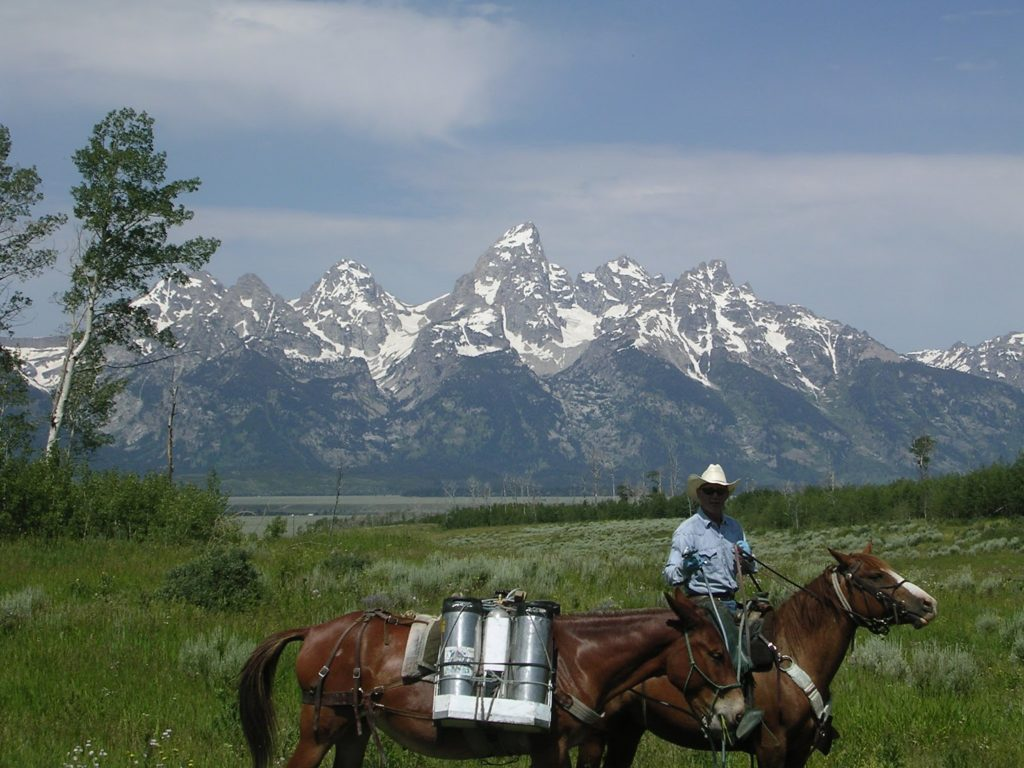 JHWMA - Backcountry Horseback Spraying - Man on Horseback in front of Tetons image