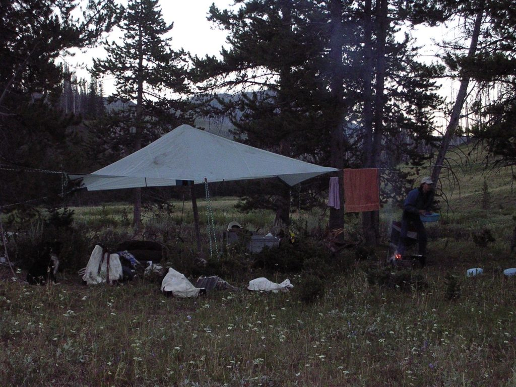 JHWMA - Backcountry Horseback Spraying - Campsite image