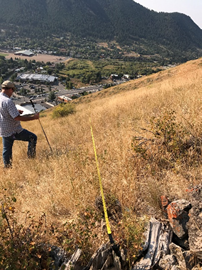 JHWMA Cheatgrass Mitigation Project -Monitoring Efforts another additional image
