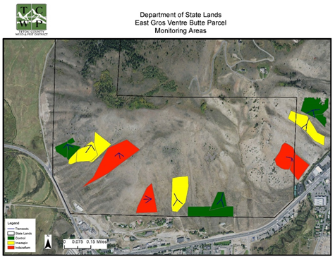 JHWMA Cheatgrass Mitigation Project - Cheatgrass Monitoring Areas image map