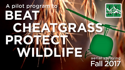 JHWMA Cheatgrass Mitigation Project -Second sample advertisement image
