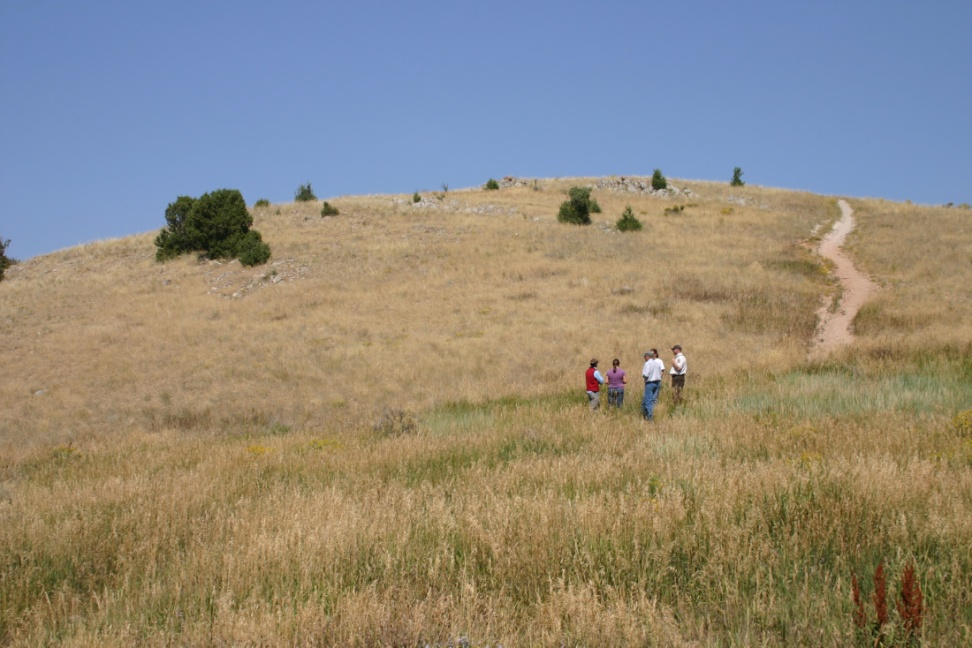 JHWMA Cheatgrass Mitigation Project - Group Standing in Field From Far Away image
