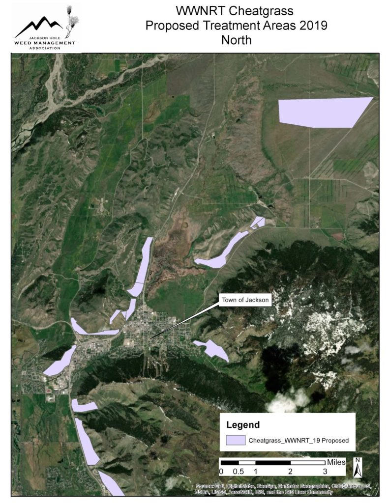 JHWMA Cheatgrass Mitigation Project - 2019 Proposed Treatment Areas South Map
