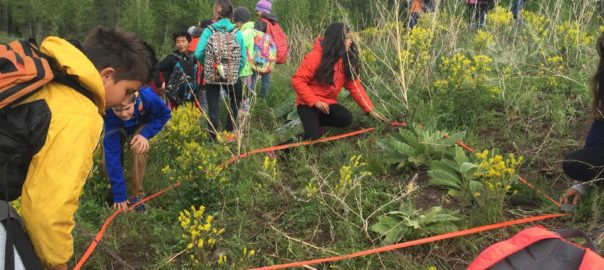 JHWMA - Education Programs Students Marking Weed Area image