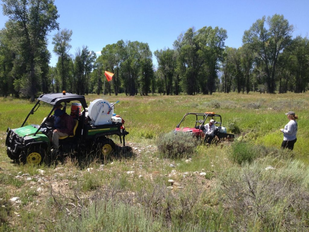 JHWMA - Gros Ventre River Spray Days Out in Field image